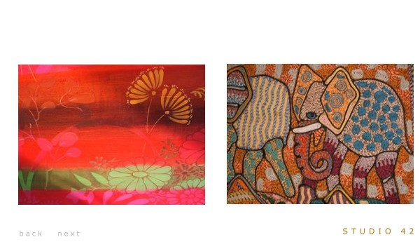 indian elephant and textile